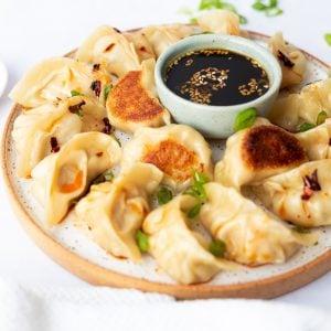 pork shrimp dumplings